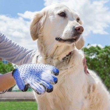 Gant Glove de Brossage pour Toilettage Animaux de Compagnie Pet Chien Chat