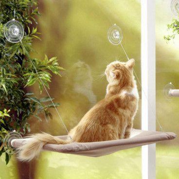 CAT BED : Hamac de Fenêtre pour Chat