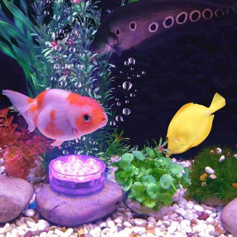 SubLED et Aquarium
